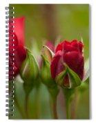 Bud Bloom Blossom Spiral Notebook