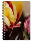 Bud To Blossom Spiral Notebook