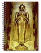 Buddha Figure 1 Spiral Notebook