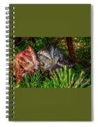 Buddies Spiral Notebook