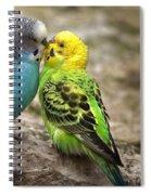 Budgerigar Spiral Notebook