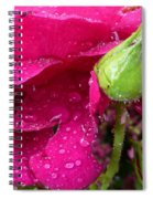 Buds And Drops Spiral Notebook