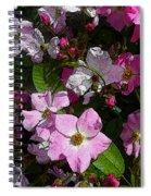 Buds And Petals- Pink Roses- Rose Bush- Floral Art Spiral Notebook