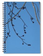 Buds And The Blue Sky Spiral Notebook