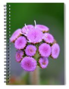 Buds In Purple Spiral Notebook