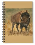 Buff Buffalo  Spiral Notebook