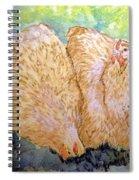 Buff Orpington Hens In The Garden Spiral Notebook