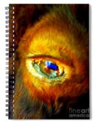 Buffalo Eye Spiral Notebook