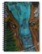 Buffalo Falls -033 Spiral Notebook