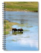Buffalo Walk Spiral Notebook