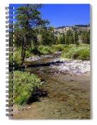 Buffalo Fork Spiral Notebook