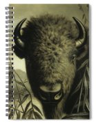 Buffalo Head Spiral Notebook