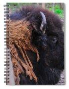 Buffalo Head Spiral Notebook