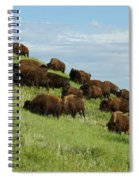 Buffalo Herd Spiral Notebook