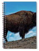Buffalo In Profile Spiral Notebook