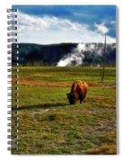 Buffalo In Yellowstone Spiral Notebook