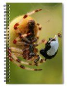 Buffet Spiral Notebook