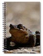 Bufo Bufo 2 Spiral Notebook