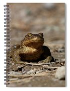 Bufo Bufo Spiral Notebook