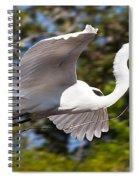Building The Nest Spiral Notebook