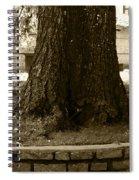 Bulgarian Afternoon Stroll Spiral Notebook