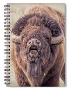 Bull Bison Spiral Notebook