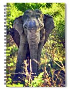 Bull Elephant Threat Spiral Notebook