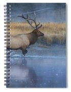 Bull Elk Crossing The Madison River Spiral Notebook