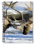 Bull Elk Fighting  Spiral Notebook