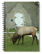 Bull Elk On The Church Lawn Spiral Notebook