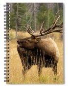 Bull Elk Sideview Spiral Notebook