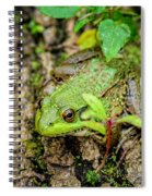 Bull Frog On A Log Spiral Notebook