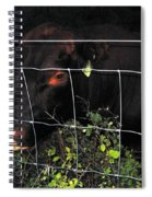 Bull Nibbling On Snowberries Spiral Notebook