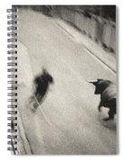 Bull Run 2 Spiral Notebook
