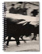 Bull Run 3 Spiral Notebook