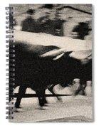 Bull Run 3 Spiral Notebook