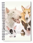 Bull Terrier W/ghost Spiral Notebook
