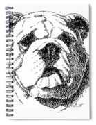 Bulldog-portrait-drawing Spiral Notebook