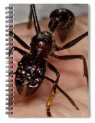 Bullet Ant On Hand Spiral Notebook