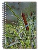 Bullrush Spiral Notebook
