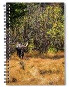 Bullwinkle Spiral Notebook