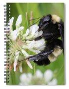 Bumble Bee By The Pond Spiral Notebook