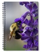 Bumble Bee Doing Lunch Spiral Notebook