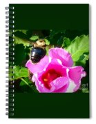 Bumble Bee Flying To Flower Spiral Notebook