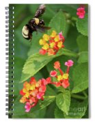 Bumble Bee In Flight Spiral Notebook