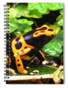 Bumble Bee Poison Frog Spiral Notebook