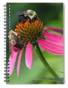 Bumble Bees At Work Spiral Notebook