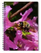 Bumblebee In Azalea Spiral Notebook