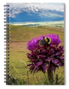 Bumblebee With The Best View Spiral Notebook