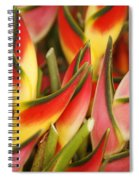 Bunch Of Heliconia Spiral Notebook
